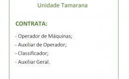 Empresa em Tamarana contrata trabalhadores para diferentes funções