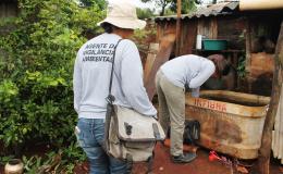Infestação de dengue em Tamarana se mantém abaixo de 1%